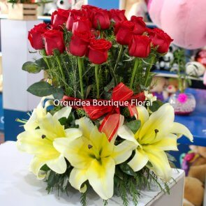 Jardín de 24 Rosas