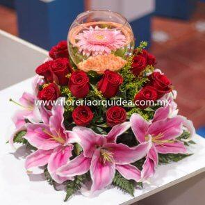 Pecera 18 Rosas