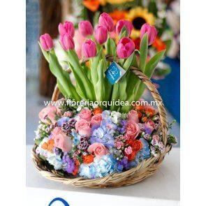 Canasta de Tulipanes Premium